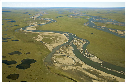 Coastal plain, Canning River, Sec 1002, ANWR, Alaska