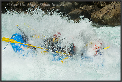 The Futaleufu River, Patagonia, Chile, swamps a raft on a whitewater rafting trip, at the Mundaca rapid..