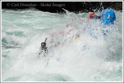 A Whitewater rafting trip on the Futaleufu River hits a Class IV rapid, Mundaca, and goes vertical. Futaleufu River, Patagonia, Chile