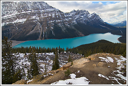 Peyto Lake, Banff National Park, Alberta, Canada.