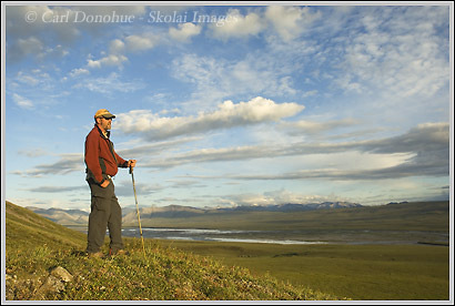 Hiker hiking on the coastal plain near the Canning River, Brooks Range, Arctic National Wildlife Refuge, Alaska.