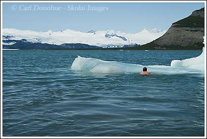 Swimming in Icy Bay, Wrangell - St. Elias National Park, Alaska.
