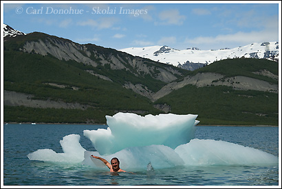 Swimming with icebergs in Icy Bay, Wrangell - St. Elias National Park, Alaska.