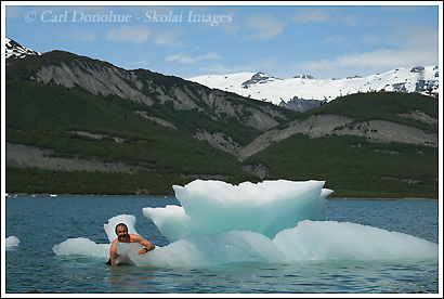 Swimming among icebergs in Icy Bay, Wrangell - St. Elias National Park, Alaska.