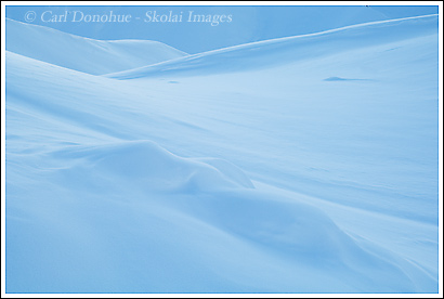 A snow covered hillside in Wrangell - St. Elias national Park, Alaska.