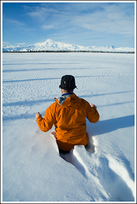 Walking, barefoot, thru waist deep powder snow, near Mt Sanford, in winter, Wrangell - St. Elias National Park, Alaska.