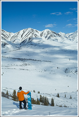Snowboarder, standing with snowboard, Mentasta Mountains, winter, Wrangell - St. Elias National Park, Alaska.