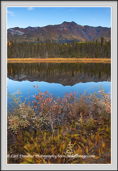 Fireweed Mountain and reflection, fall, Wrangell - St. Elias National Park, Alaska.