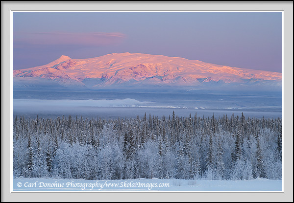 Winter landscape of sunset over Mt. Wrangell and the Copper River Basin. Mount Wrangell, Mount Zanetti and snow covered boreal forest of the Copper River Basin, Wrangell - St. Elias National Park and Preserve, Alaska.