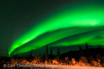 Aurora borealis, Wrangell - St. Elias National Park and Preserve, Alaska.