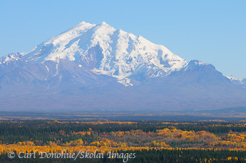 Mount Drum, fall colors, Wrangell - St. Elias National Park and Preserve, Alaska.
