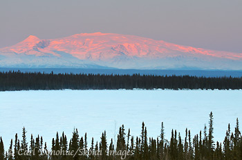 Willow Lake, frozen and snow covered, view across the Copper River basin to Mount Wrangell and Mt Zanetti, winter, alpenglow on the mountains, Wrangell - St. Elias National Park and Preserve, Alaska.