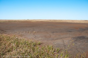 Flat Earth - Drying pond on coastal plain, ANWR, Alaska.
