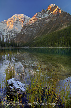 An early fall snow coats the peaks of Mount Edith Cavell, Edith Cavell Lake, Canadian Rockies, Jasper National Park, Alberta, Canada.