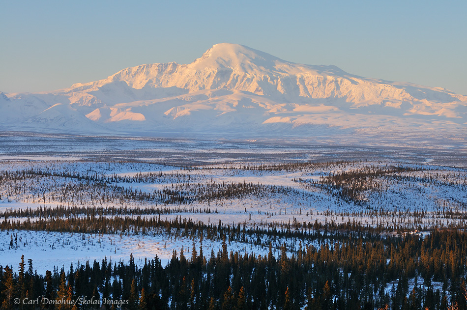 Mount Sanford, alpenglow, Copper River basin at dawn, winter, Wrangell - St. Elias National Park and Preserve, Alaska.