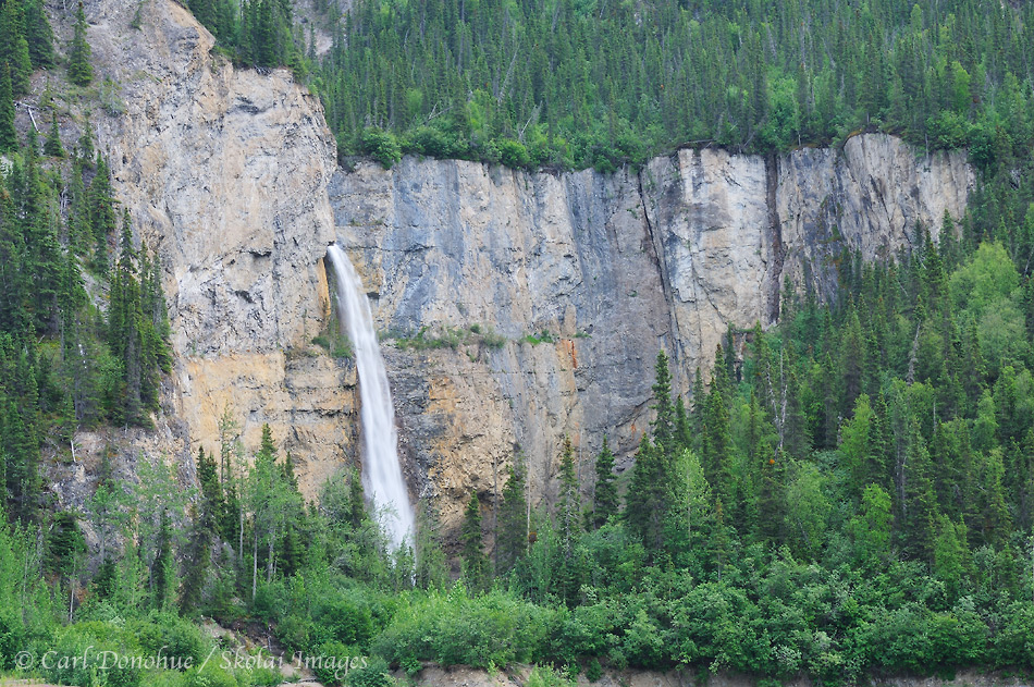 Waterfall and boreal spruce forest, Nizina River drainage, Wrangell - St. Elias National Park and Preserve, Alaska.
