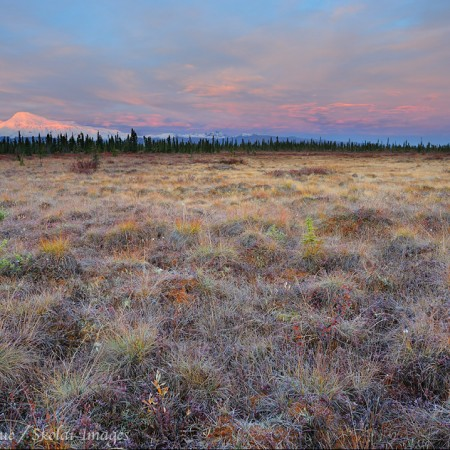 Mount Sanford at sunrise, Wrangell - St. Elias National Park and Preserve, Alaska.