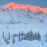 Mount Blackburn in winter, Wrangell - St. Elias National Park and Preserve, Alaska.