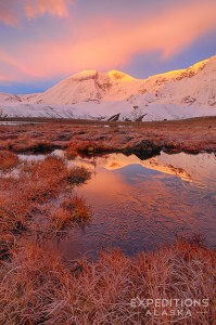 Mt Jarvis at sunrise, Wrangell - St. Elias National Park, Alaska.
