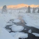 Mt. Healy, in winter, Denali National Park, Alaska