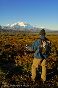 Hiking in Denali National Park, Alaska. Mount McKinley in the background.