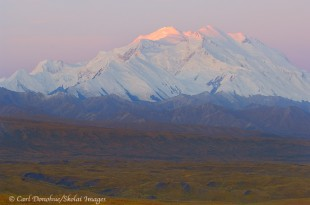 Dawn alpenglow on Mt. McKinley, Denali National Park, Alaska.