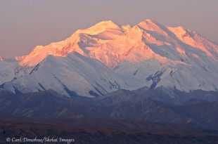 Dawn alpenglow on Mount McKinley, DenalI National Park Alaska.