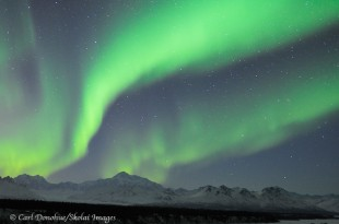 Northern Lights over Denali, Mount McKinley.