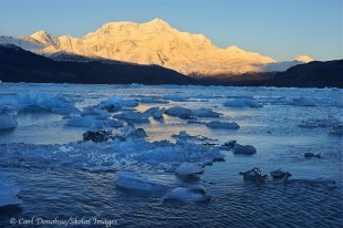 Icebergs, Icy Bay and Mt. St. Elias.