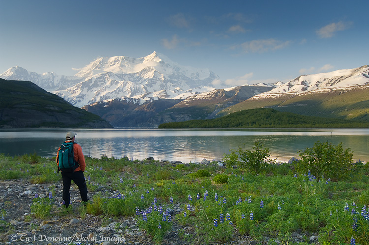 A hiker takes in the view of Mt. St. Elias.