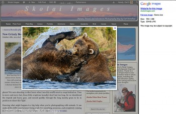 Screen shot showing how google images previously displayed images.