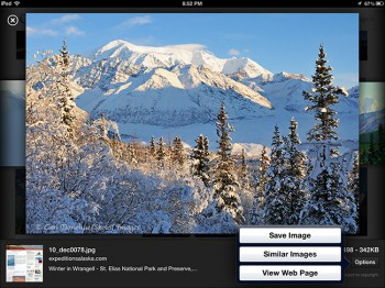 """A screenshot of how google images displays photos, hotlinking the original file, with a """"Save Image"""" option."""