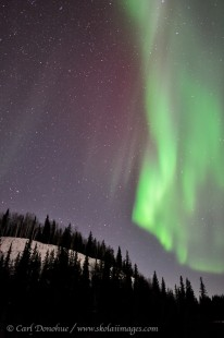 Northern lights off Dalton highway, Alaska.
