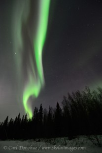 Green Active aurora borealis display Alaska