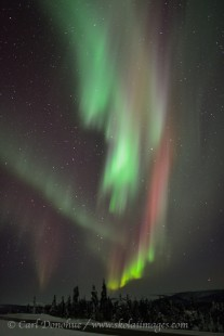 Northern lights over the Dalton Highway. Alaska.