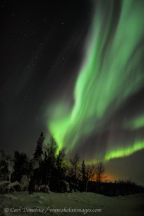 Active aurora borealis photo over the boreal forest, Alaska.