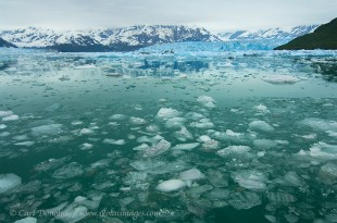 Icebergs in Disenchantment Bay and the Hubbard Glacier, Wrangell - St. Elias National Park, Alaska.