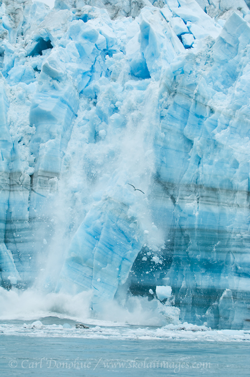 Ice calving off the Hubbard Glacier, a tidewater glacier in Disenchantment Bay, Wrangell - St. Elias National Park, Alaska.
