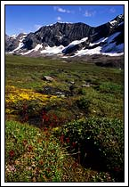 Chugach mountains, alpine country, Wrangell St Elias National Park, Alaska