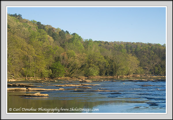 Springtime on the chattahoochee river photos for Cochran shoals