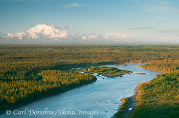 The Copper river and Mt Drum, from Simpson Hill Overlook. View of the Copper River basin and Wrangell Mountains, Wrangell - St. Elias National Park and Preserve, Alaska.
