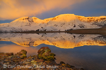 Sunrise glows on the peak of Mount Jarvis, and a near perfect reflection lights up a small alpine tarn in the Wrangell Mountains, Wrangell - St. Elias National Park and Preserve, Alaska.