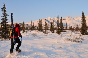 Snowshoeing and backcountry skiing in the Mentasta Mountains, winter, Wrangell - St. Elias National Park and Preserve, Alaska.