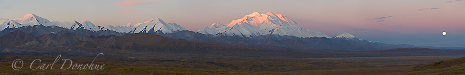 """A panoramic image, 5 horizontal frames stitched together, of the Alaska Range and Mt. McKinley, or Denali as it's commonly referred to, glowing in the early morning alpenglow of a fall sunrise. A full moon sets in the distance. The peak, or summit of """"Denali"""", or Mt. McKinley, is over 20 000 feet above sea level, and this mountain is the highest mountain in North America. Denali National Park, Alaska."""