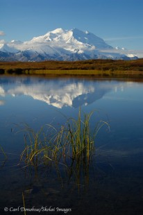 Denali, or Mt. McKinley, and reflection.
