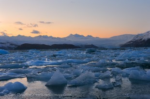 icebergs fill icy Bay, remnants of the rapidly calving Guyot Glacier in Wrangell - St. Elias National Park and Preserve, Alaska.